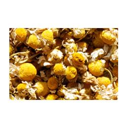 Tisane Camomille Matricaire Bio (Matricaria recutita) 50g