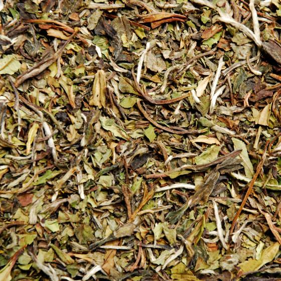 Thé blanc pure origine de Chine Paï Mu Tan Pivoine Blanche vrac